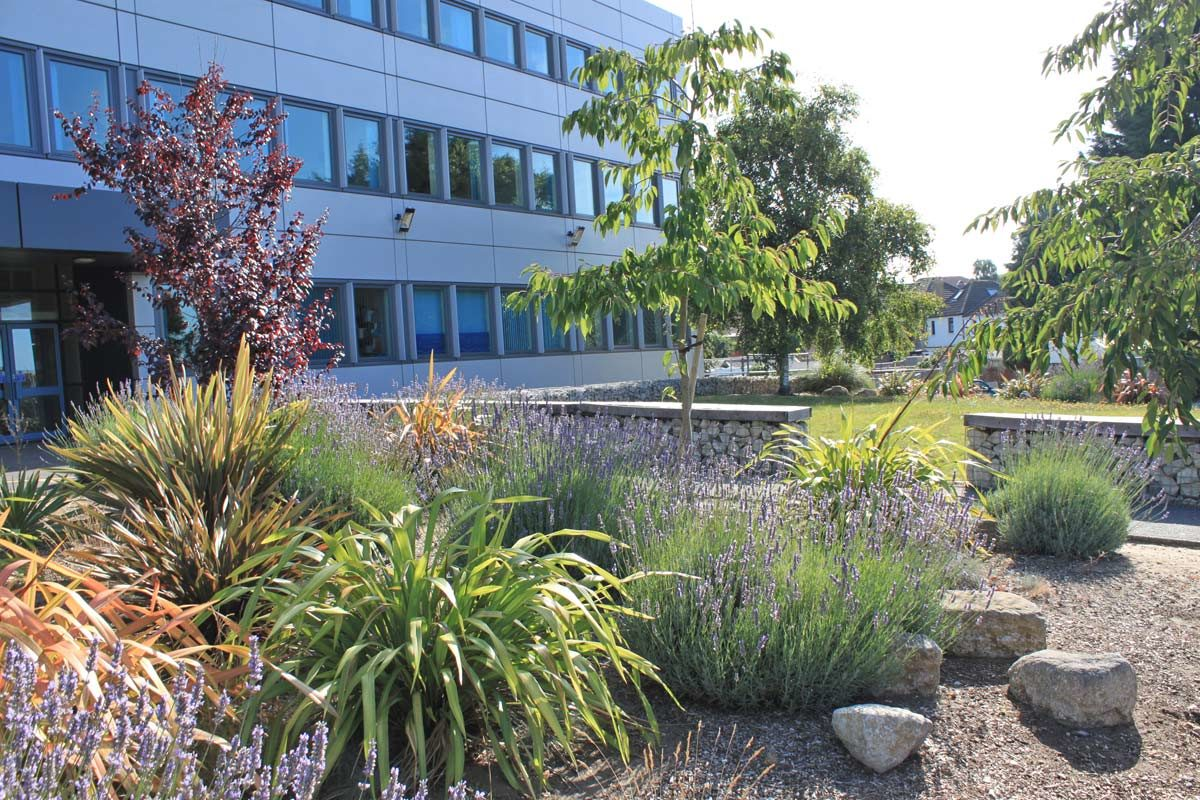 Bournemouth & Poole College - JPS Landscape Design