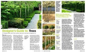 CHOOSING THE RIGHT TREE FOR YOUR GARDEN