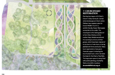GARDENS ILLUSTRATED ARTICLE